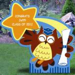 "Graduation Owl display includes 4 ft tall owl sign customized with graduate's name and two starburst shaped signs with school name and ""Class of 2013"" in school colors.  Add balloons to show off school colors!!"