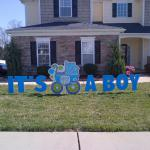 4 ft tall baby carriage and large letters to announce the birth of your new baby boy or girl!  Optional sibling stars may be added for $10 each