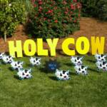 Cow theme is great for many occassions! Includes 12 cows scattered around the yard with personalized message in large letters.